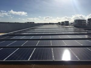 Solar Bunnings