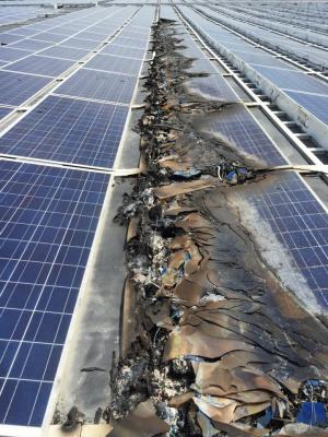 Burnt Solar Array 6